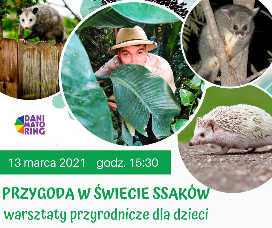 Przygoda W Świecie Ssaków - Warsztaty Przyrodnicze Dla Dzieci - Danimatoring.pl zdjęcie nr 1
