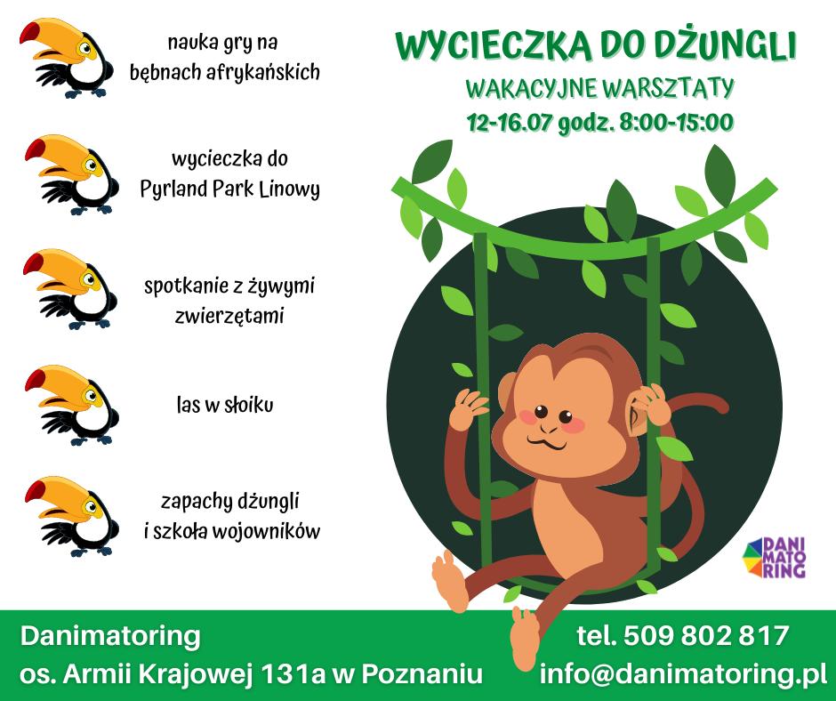 Aktualności | Danimatoring.pl zdjęcie nr 2