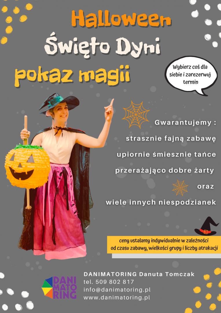 Aktualności   Danimatoring.pl zdjęcie nr 4